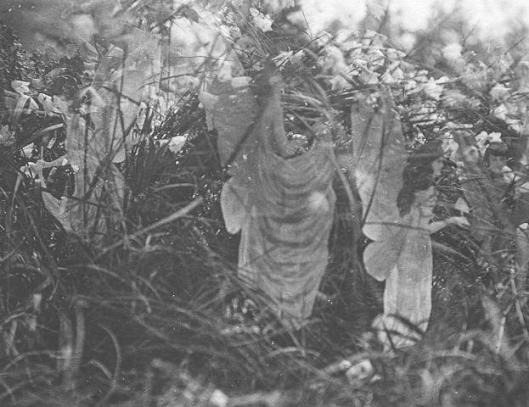 The fifth Cottingley photo